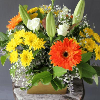floral box 60 4