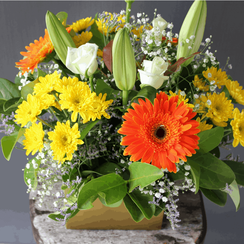 Deluxe boxed arrangement aussie world flowers sunshine for A arrangement florist flowers