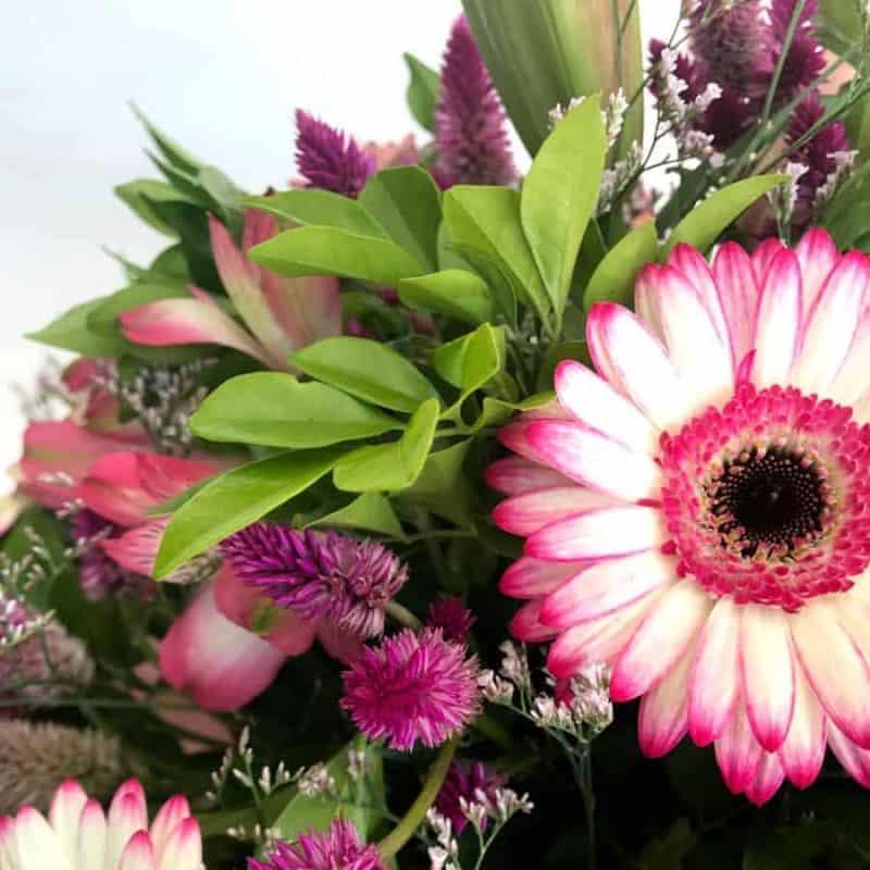 Premium Boxed Flower arrangement